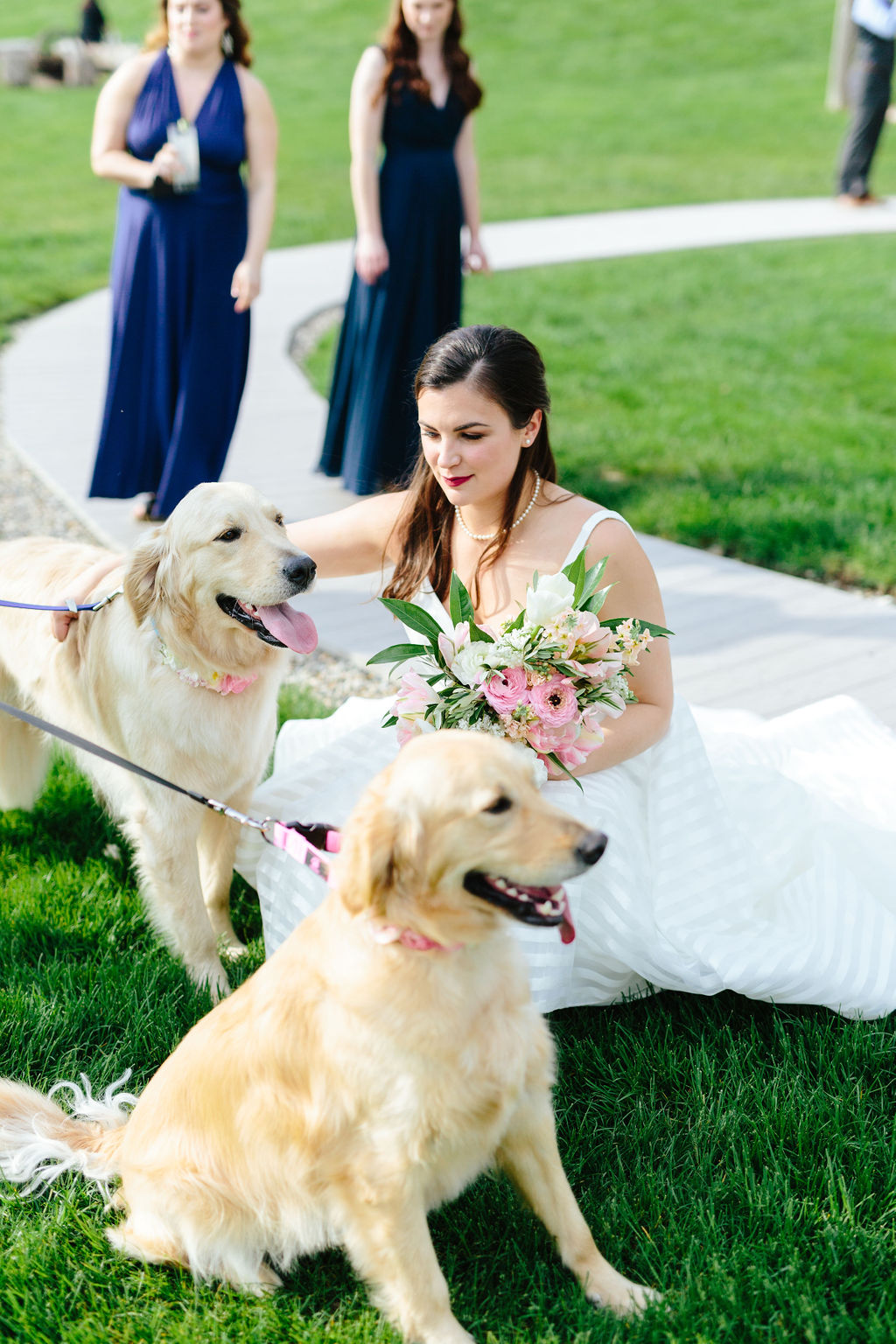 Bride with her dogs - golden retrievers - Preppy spring wedding at Zingerman's Cornman Farms - Leah E. Moss Designs - photo by Katie Grace Photography